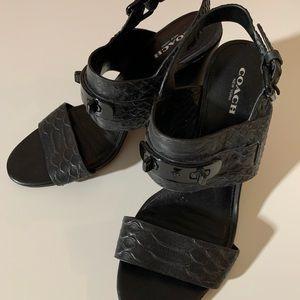 Coach worn once $310 Dennis Leather Heels